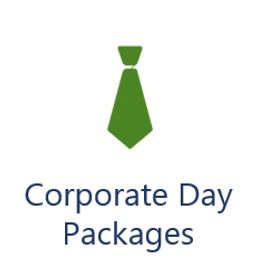 corporate icon